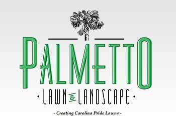 Palmetto Lawn and Landscaping - Greenville, SC